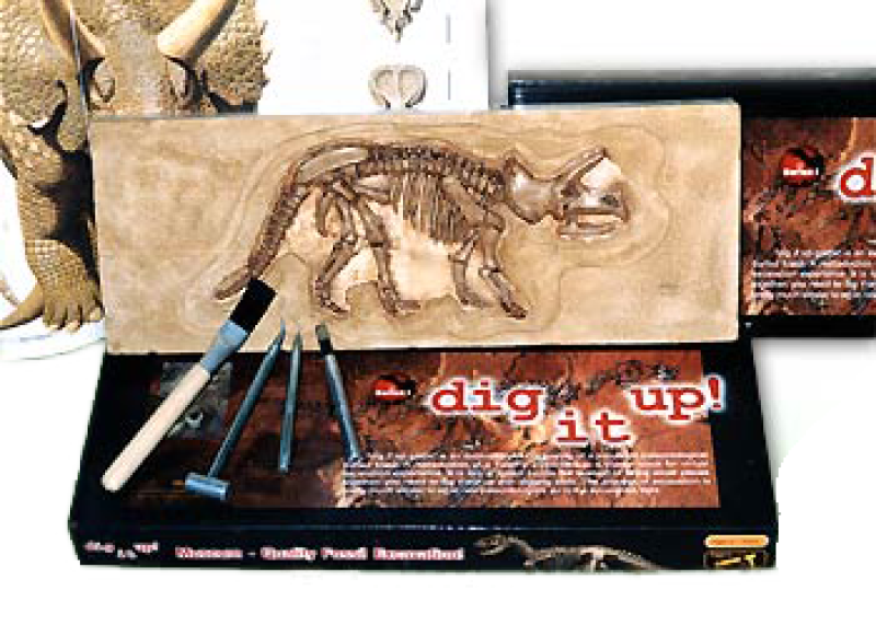 dinosaurier-fossil-triceratops-selberausgraben-verpackung